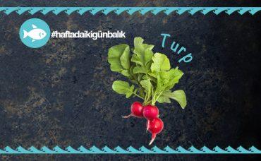 Havuçlu Roka Salatası Tarifi