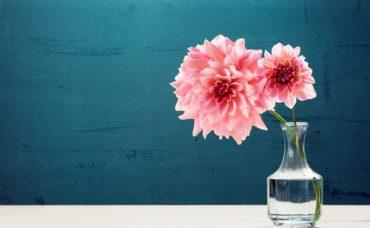 Çiçeklerin Daha Uzun Süre Canlı Kalması İçin Ne Yapılır?