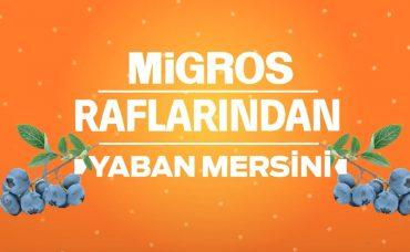 Migros Raflarından Yıldız Ürünler: Yaban Mersini