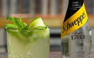 Schweppes Zero Tonic ile Mocktail