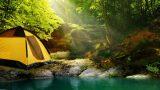 Yeşilin Tadı: Kamp Hayatının Olmazsa Olmazları