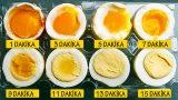 Hayaldi Gerçek Oldu: Dakikalara Göre Tam Kıvamında Yumurtalar!