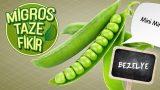 Mini Mini Yeşiller Bahar Kokulu Tarifler; Hoşgeldim!