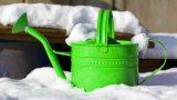 Küçük Balkonlarda Kış Bahçesi Yaratmanın 7 Keyifli Yolu