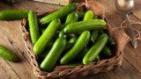 7 Püf Noktasıyla Salatalık Turşusu Nasıl Yapılır?